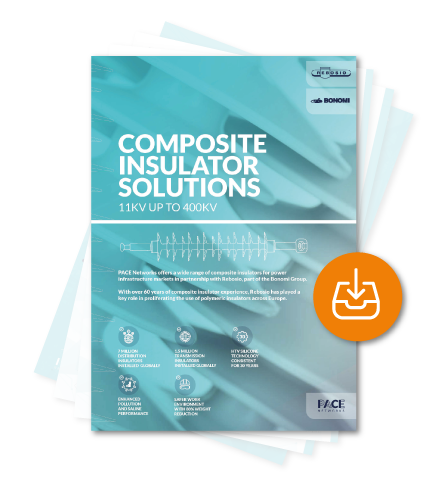 Composite Insulator Brochure